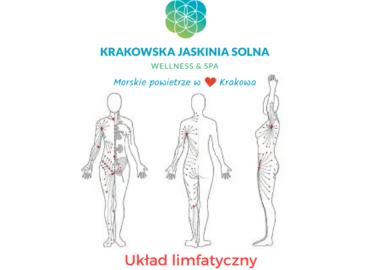 Układ limfatyczny i jego dysfunkcje