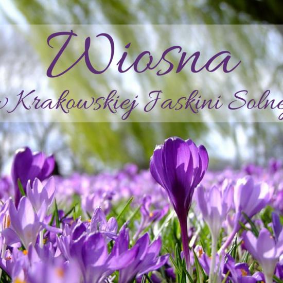 Pierwszy dzień wiosny w Krakowskiej Jaskini Solnej!