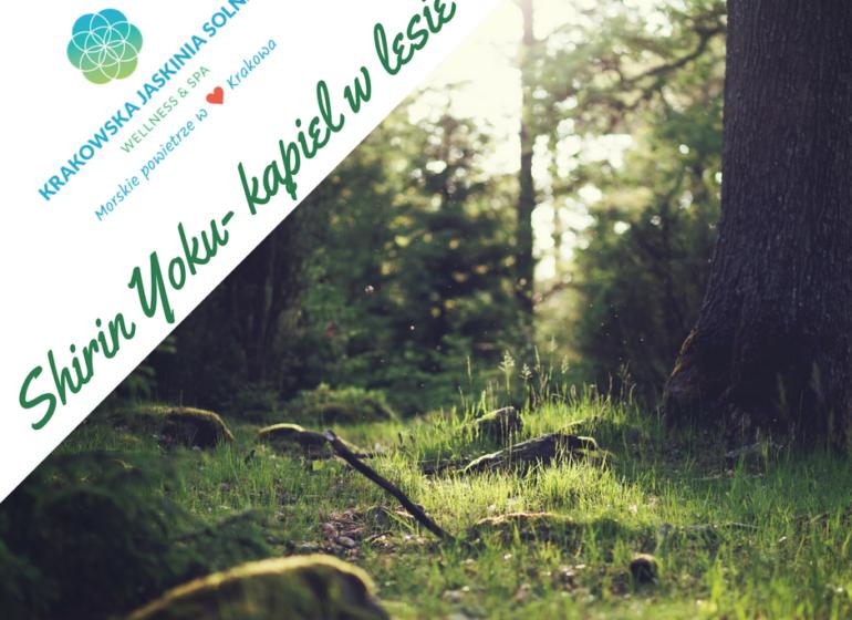 Shirin yoku - lecznicza moc lasu