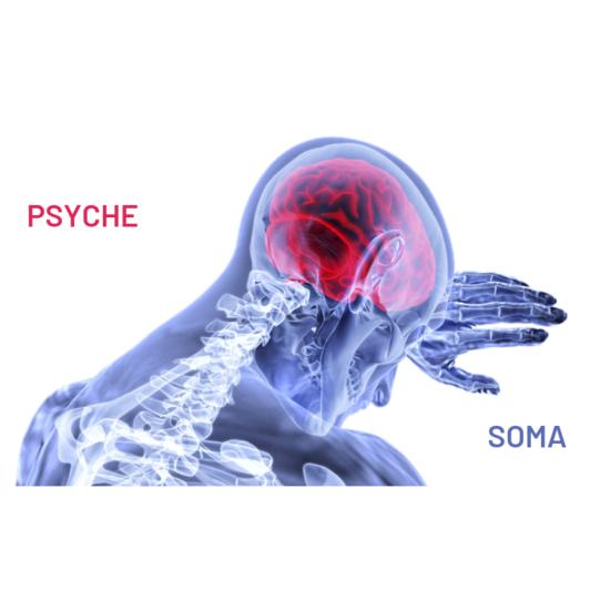 Psychosomatyka, nieodłączność ciała i umysłu