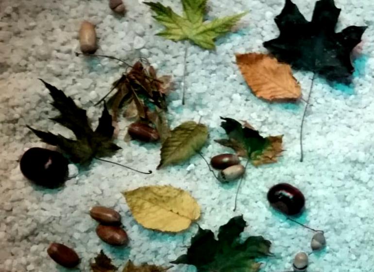 wrześniowe promocje w krakowska jaskinia solna
